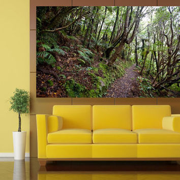 VEINS - Tree Wall Mural - Nature Fine Art Photography - Wall Mural - Canvas Art - New Zealand - Rainforest Photo -  Canopy - Nature Lover