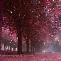 "Nature Photography, Sparkling Twinkling Pink Nature, Twinkling Lights Pink Mauve Woodlands Trees, Dreamy Fantasy Nature Woodlands 8"" x 12"""