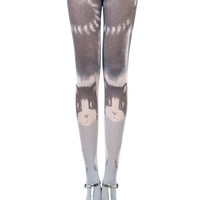 Cat Print Velvet Tights