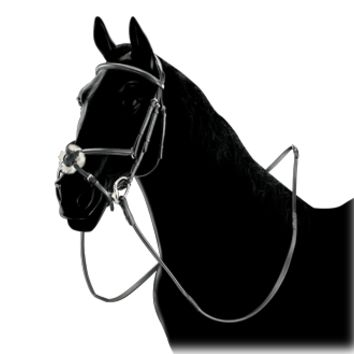 Equiline Figure 8 Bridle