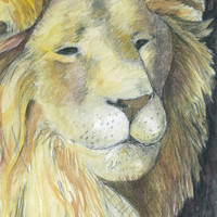 Lion Print, Giclee Print, Africa, Aslan the lion, C S Lewis art, Chronicles of Narnia, Limited Edition Print 150  watercolour painting