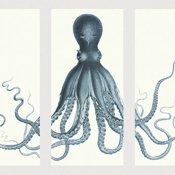 "Lord Bodner's Octopus Triptych Art Print 72"" x 52"" Sea Squid Vintage Nautical Decor Ocean Wall Art Large Giclee Print Cotton Canvas & Satin"