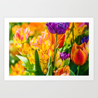 Tulips Enchanting 01 Art Print by Digital2real