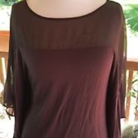 BEBE solid brown sheer upper Top shirt Size SMALL S bat sleeves
