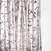 Birch Tree Shower Curtain- Grey One