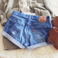Vintage Cuffed Jean Shorts