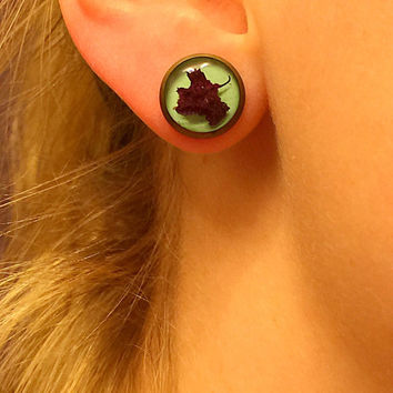 Free Shipping! Real Plant Earrings, Real Flower Earrings, Real Plant Jewelry, Resin Earrings Live Flower