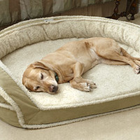 | Personalized Dog Beds | Personalized | Dogs - Orvis Mobile