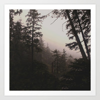 Oregon Coastal Forest Art Print by Leah Flores