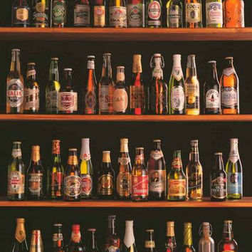 Beers of the World Import Beer Bottles Poster 24x36