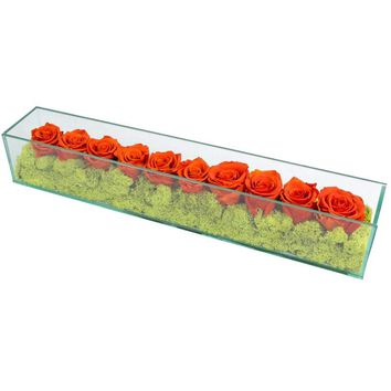 Preserved Roses in Rectangular Glass Orange