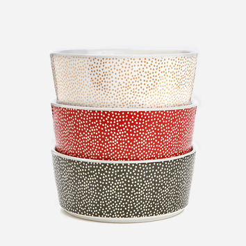Specktacular Polka Dot Dog Bowl