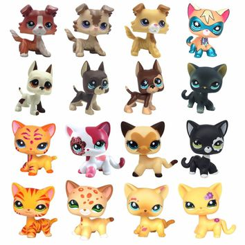 Real standing Short Hair cat animal pet toys dog original collections great dane collie dachshund spaniel girls gift