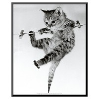Art.com - Kitten on a Clothes Line by Erik Parbst - Mounted Print