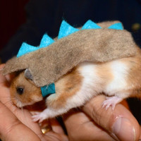 Hamster dinosaur. Pet Halloween costumes by la by laMarmotaCafe