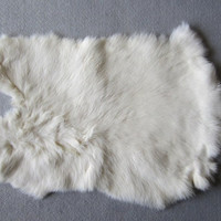 White Rabbit Pelt  Rabbit Fur  Crafts Pow Wow, Native American Art, Supplies, Gift Shop Quality