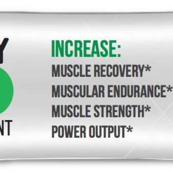 RECOVERY2GO- 3-in1 Muscle Builder - Post Workout Creatine Monohydrate, BCAA, and L-Glutamine - Fruit Punch- 30 Individual Packets