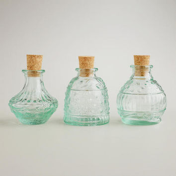 Recycled Glass Spice Jars, Set of 3 | World Market