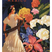 VERA CRUZ MEXICO travel poster 24X36 DANCER exotic flowers LATIN CULTURE
