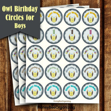 Owl Birthday Decoration - Kids Birthday Cake Toppers - Printable Owl Cupcake Toppers - 1st 2nd Birthday Cake Toppers - Babyboy 1st Birthday