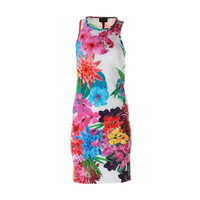 Laundry by Shelli Segal Womens Neoprene Floral Print Casual Dress
