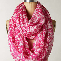 Fuchsia Abstraction Infinity Scarf