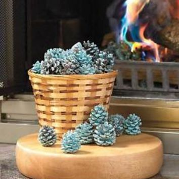 Rainbow Flame Coloring Pine Cones Fireplace Firepit Camping Fire Colors Fun