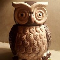 🌟RARE Cracker Barrel Cookie Jar Old Country Store Owl Holiday Christmas Holly