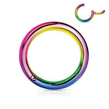 BodyJ4You Segment Ring Earring Lip Nose Septum Hinged Seamless Stainless Steel Rainbow 16G Body Jewelry