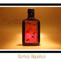 Rumus Aquarius - Hand Painted Bottle, Rum bottle, Whisky bottle, Whiskey bottle, Upcycled bottle.