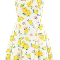 Printed lovely Sleeveless Knee-length Skater Dress