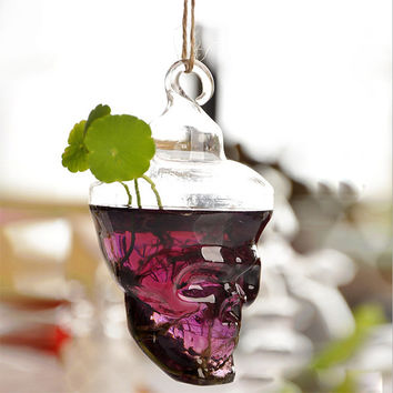 Hot New Clear Glass Skull Shape Flower Plant Hanging Vase Hydroponic Container Office Wedding Decor
