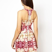Ginger Fizz Skater Dress With Cut Out In Bed of Roses Print