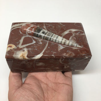 "686g, 5""x3""x2.2"" Rectangular Fossils Ammonite Red Jewelry Box @Morocco, MF637"