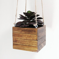 Hanging Planter, Succulent Planter, Wood Planter, Modern Planter, Air Plant Holder, Geometric Planter, Indoor Planter, Succulent Pot, Rustic
