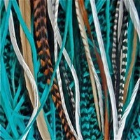 "5 Genuine 8""-10"" Turquoise,brown,white & Grizzly Feathers for Hair Extension"