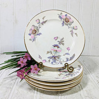 Dessert or Lunch Plates Set of 5 National Ivory Dinnerware Pink & Purple Poppies Pattern Shabby Chic Bread Plates Set 6 Inch China Plates