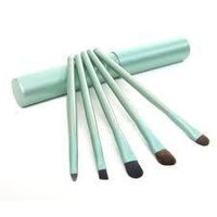 5pc eye Makeup brush set with matching color storage container