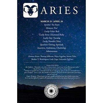ARIES description astrology poster 24X36 FAMOUS people QUOTES qualities NEW