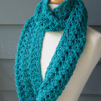 Free Shipping  Shelley Infinity Scarf Large by ArtsyCrochet