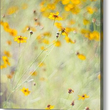 Summer Invitation Acrylic Print By Joel Olives