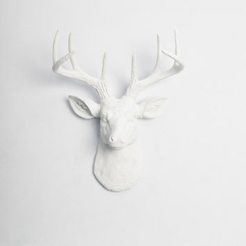 Whitefauxtaxidermy On Etsy On Wanelo