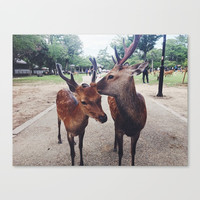 Kiss me, deer Canvas Print by loonatee