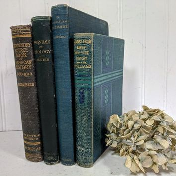 Ornate Books Collection of 4 for Decor Greens and Blues with Gold Lettering Books Set for Wedding Stage Theater Set Design Art Projects