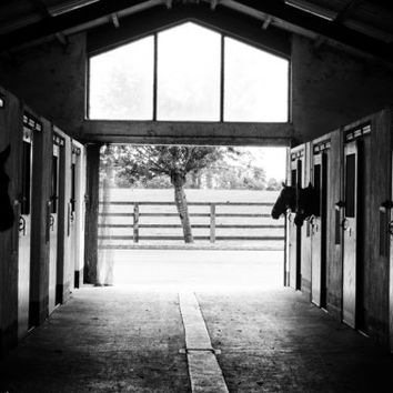Barn Photograph, digital photography, barn, black and white, print, canvas