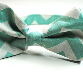 Custom Listing for Carissa, 1 Mens Mint Chevron Necktie and 1 Doggie Bow Tie