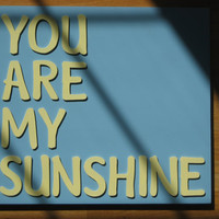You Are My Sunshine Sign : Wooden Sign / Custom Sign