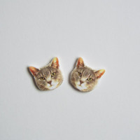 Grey Tabby Cat Post Stud Earrings Novelty Gift