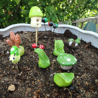 beautiful complete fairy garden set in springtime green terrarium planter fairy fantasy birdhouse