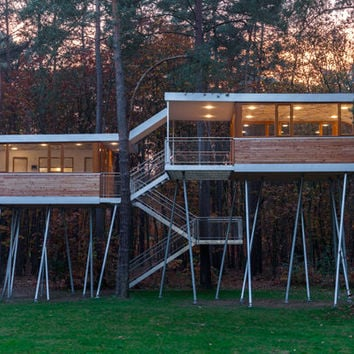 A special kind of tree house | Architecture at Stylepark